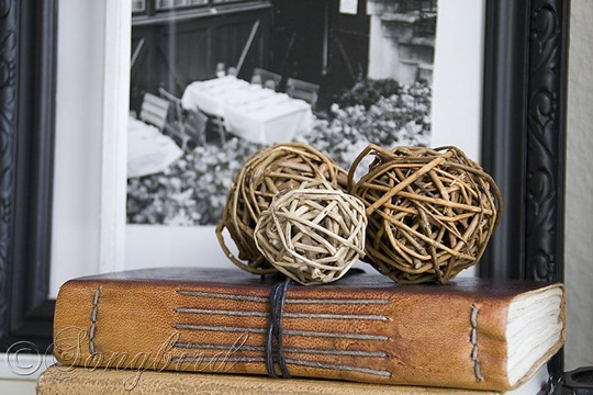 Fall Vignette Leather Albums Twig Balls