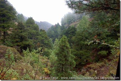 6855 Barranco Andén-Cueva Corcho(Barranco Crespo)