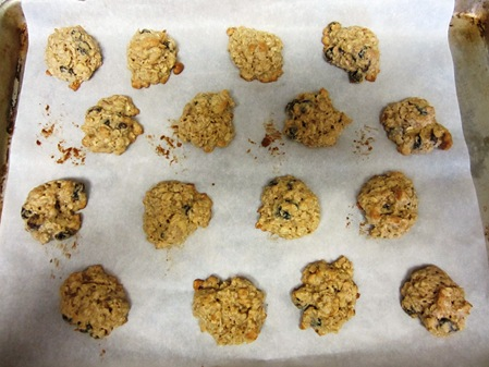 oatmeal cookies 025