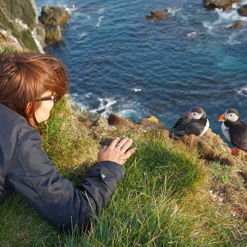 Bird Watching at Latrabjarg Cliffs, Iceland