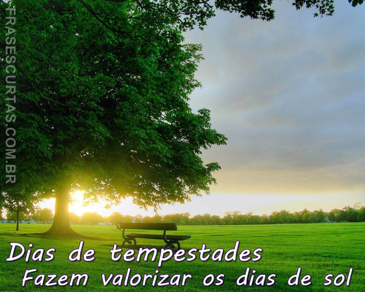 Frases Da Bíblia De Amor 6 Quotes Links