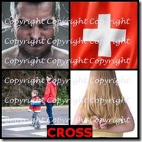 CROSS- 4 Pics 1 Word Answers 3 Letters