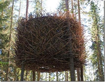 The-Birds-Nest-Inrednin-Gsgruppen-2