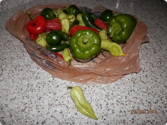 Bag of peppers. Those yellow ones are SUPER HOT!!!!