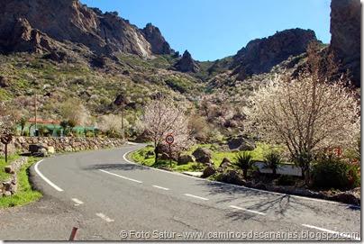 7439 La Goleta-La Candelilla(Ayacata)