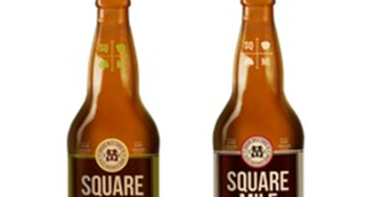 Craft Beer Alliance Salaries