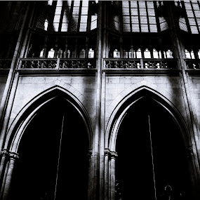 by Micky Mihalache - Black & White Buildings & Architecture ( history, monuments, black and white, cathedral, light, prague )