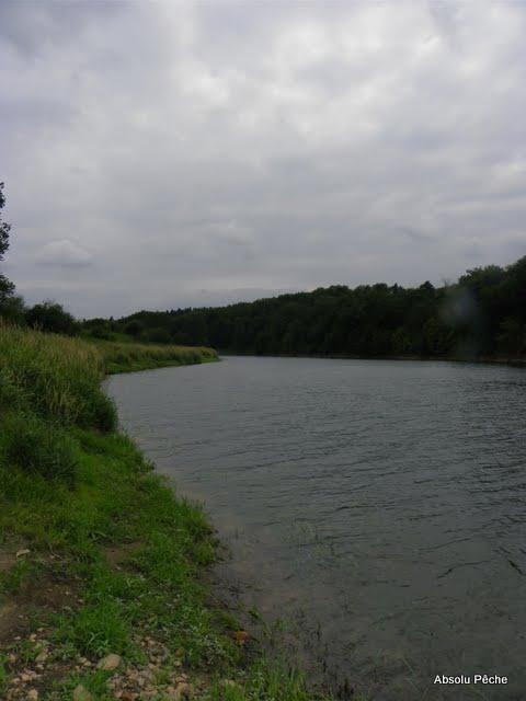 Loire à l'embouchure de l'Aix photo #375