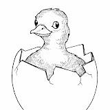 egg_duck.jpg