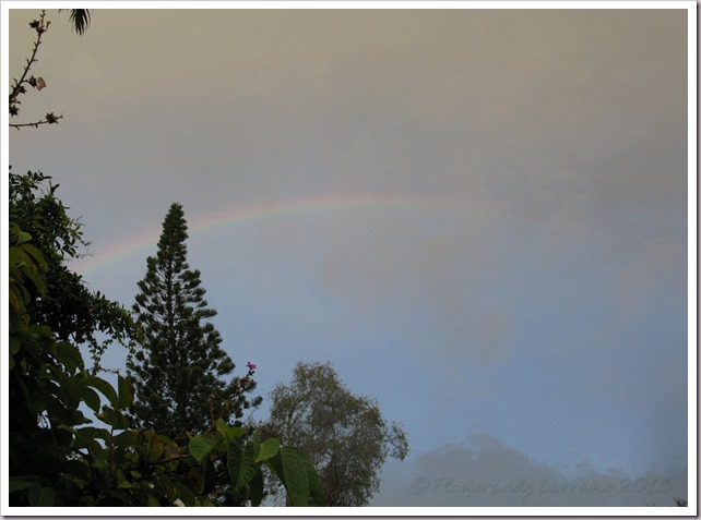 07-03-morning-rainbow2