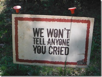 cried sign