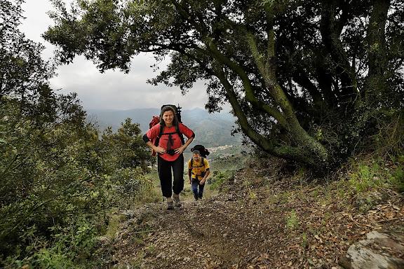 Camí vell de Porrera a Poboleda pel collet dels Tossals, camí de ferradura. Xarxa de camins del Priorat.DOQ Priorat.Porrera, Priorat, Tarragona