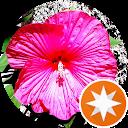 Image Google de frédéric jansem
