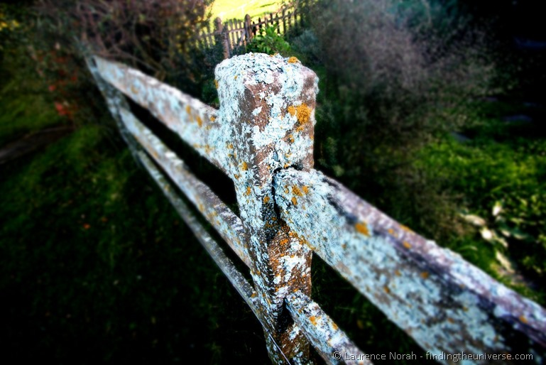 Fake lichen covered fence post hobbiton New Zealand film set