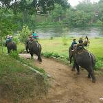Тайланд 17.05.2012 11-55-24.JPG