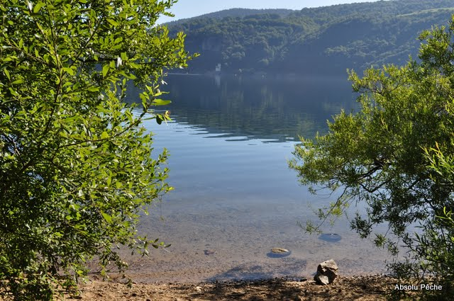 Lac d'Issarlès photo #493