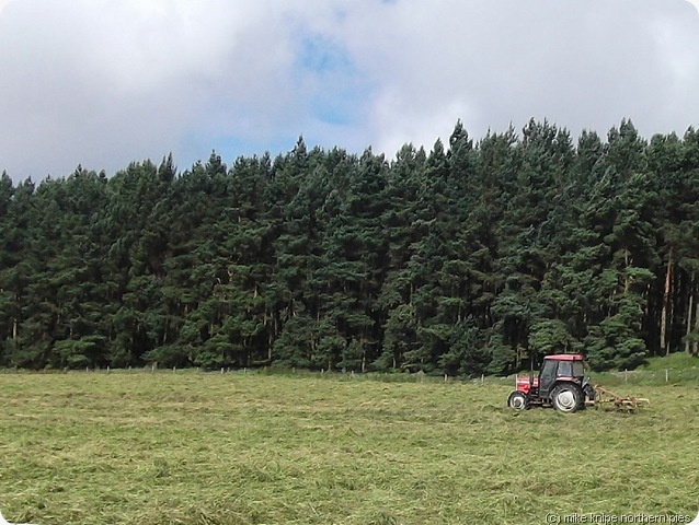 turning hay near townfield