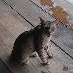 Тайланд 17.05.2012 15-25-50.JPG