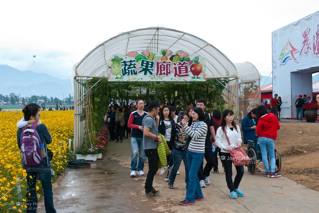 2014 台中 新社花海 花毯節