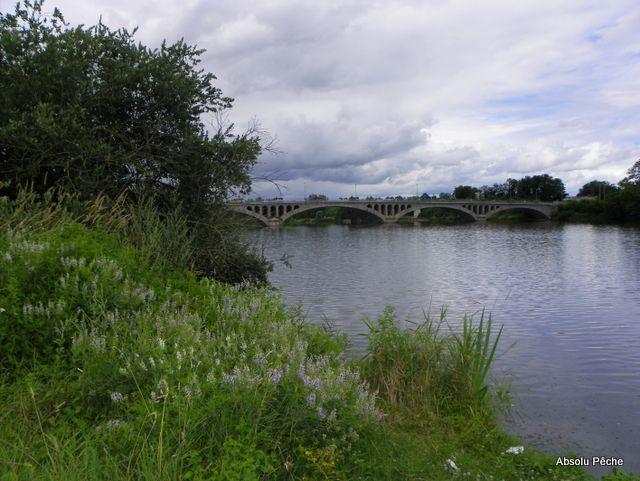 Loire en Amont du pont de Feurs photo #1004