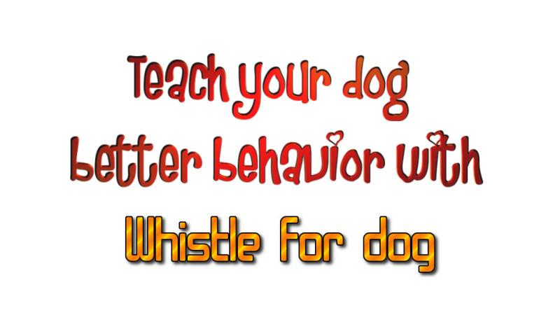 Whistle for dog - screenshot