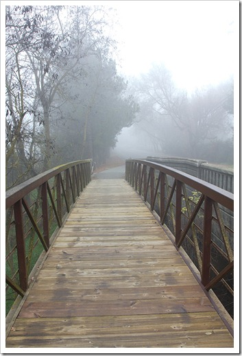 111220_fog_footbridge