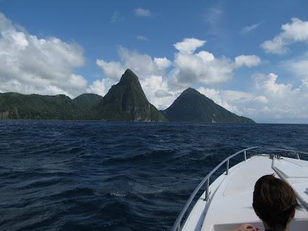 Pitonii din Caraibe