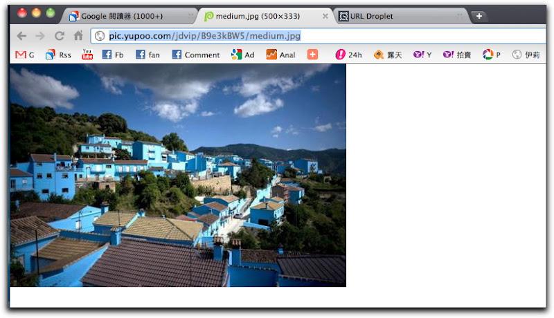 Google Chrome201105007.jpg
