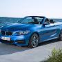 BMW-2-Serisi-Cabrio-2015-14.jpg