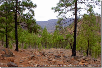 6969 Chira-Cruz Grande(Pinar Pilancones)