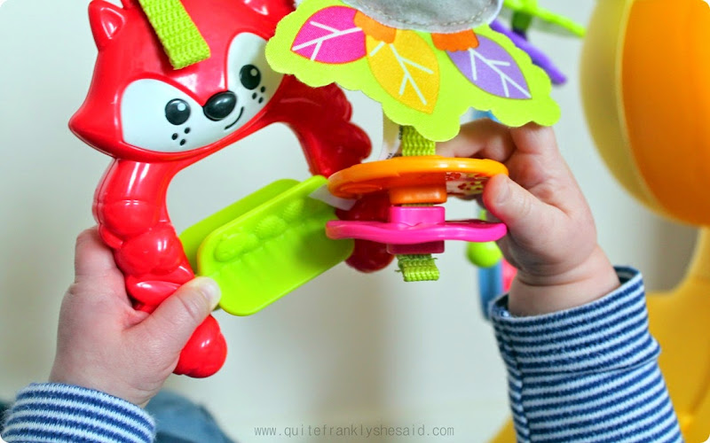 fisherprice baby gym review
