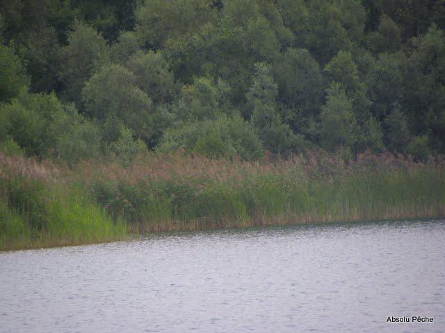 Lac du Grand Colombier photo #524