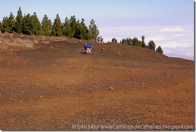 2999 C. de Tejeda-Lomo del Palo