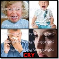 CRY- 4 Pics 1 Word Answers 3 Letters