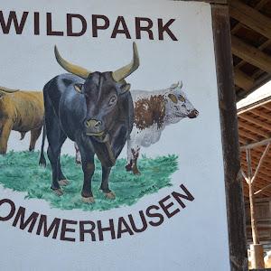 20140309_WildparkSommerhausen-1.JPG