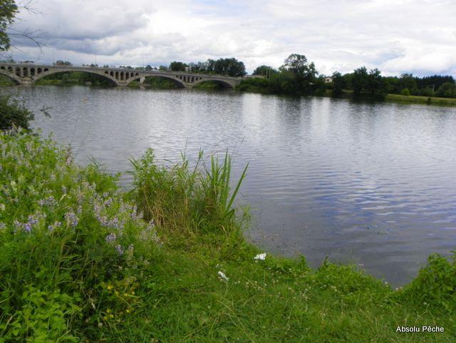 Loire en Amont du pont de Feurs photo #1005