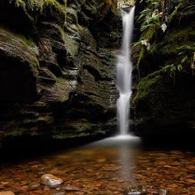 Secret Falls by Matt Green - Landscapes Waterscapes ( waterfall, long exposure, landscape )
