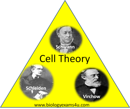 cell theory proponents