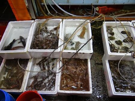 08. Sea food in HK.JPG