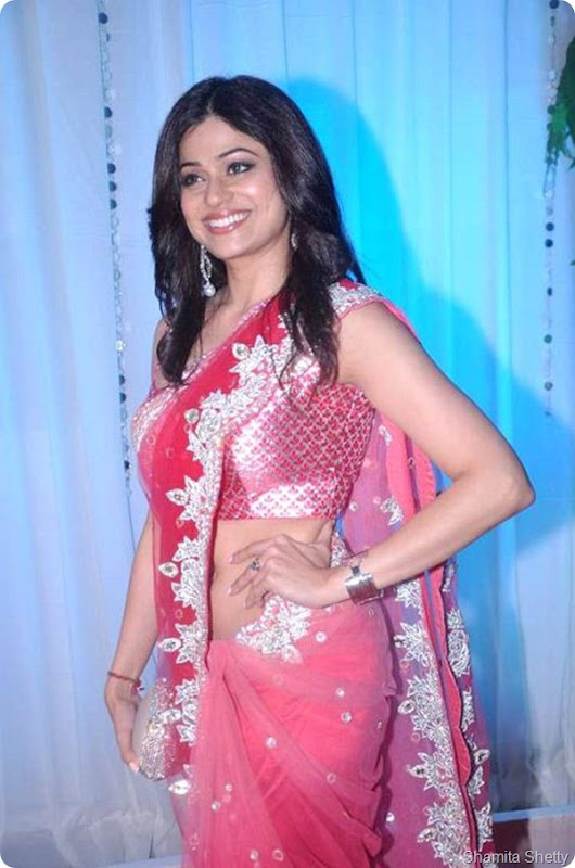 Exclusive Photos of Esha Deol's wedding reception6