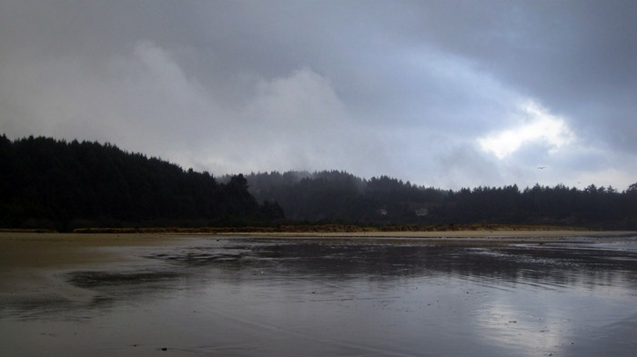 Clouds, Trees, and Water on Bastendorff Beach Coos Bay Oregon