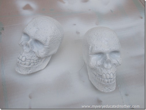 @mvemother Glow in the Dark Day of the Dead Skulls2