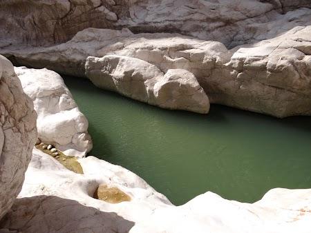 17. Apa in desert.JPG