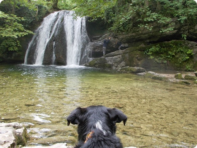 lucky watches the attempt on janets foss cave