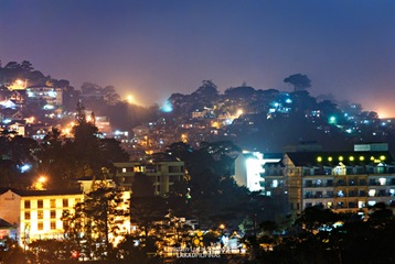 Buildings, Pines, and Houses at Baguio City