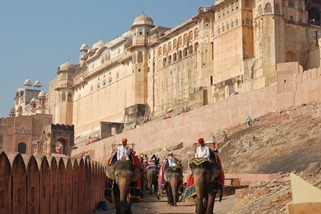 Amber-Amer-Fort-and-Palace-1