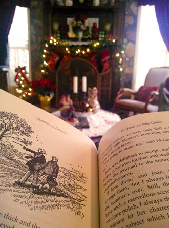 Book and Christmas Decorations