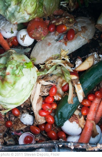 'Rotting Compost Food Macro March 01, 20113' photo (c) 2011, Steven Depolo - license: http://creativecommons.org/licenses/by/2.0/