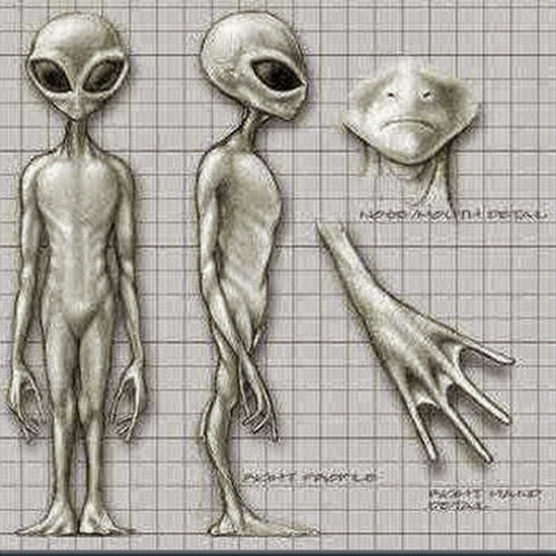 Alienígenas Greys