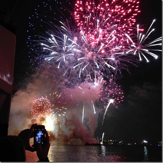 fireworks  (64)